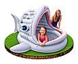Детский надувной бассейн Intex 57120 Акула, фото 2