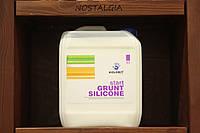 Силиконмодифицированный гидрофобизирующий и укрепляющий грунт Silanit  Колорит 5 л