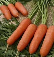 Морковь Чикаго F1 семена раннего высокоурожайного гибрида моркови для изготовления сока и хранения в зимой