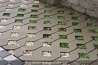 Тротуарная плитка Горчичная  ( Парковочная решетка)