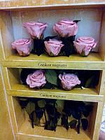Набор из 7 роз Неувядающая долгосвежая живая роза FLORICH-  5 карат