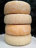 Козий твердый сыр.