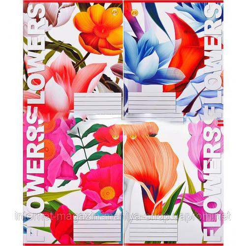 Тетрадь цветная 60 листов, линия