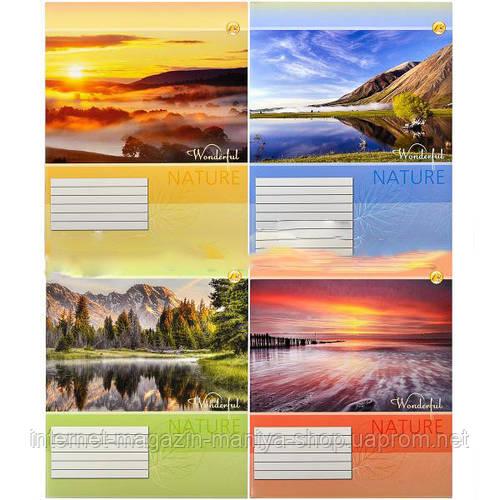Тетрадь цветная 96 листов, линия