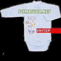 Детский боди с длинным рукавом р. 74 демисезонный ткань ИНТЕРЛОК 100% хлопок ТМ Авекс 3149 Голубой