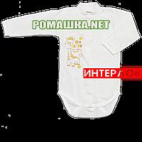Детский боди с длинным рукавом р. 74 демисезонный ткань ИНТЕРЛОК 100% хлопок ТМ Авекс 3149 Бежевый