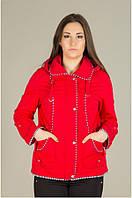 Стильная женская куртка-ветровка большого размера с капюшоном качественного кроя 5009 Епб
