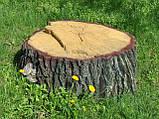 Декоративная крышка люка - кашпо, фото 5