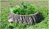 Ландшафтный Дизайн люки