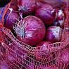 КАУНТАЧ F1 - семена лука репчатого красного, 100 000 семян, Bayer Nunhems