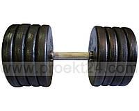 Гантель наборная стальная 1шт 42 кг