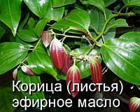 Корица(листья)-эфирное масло(Германия)-10 мл