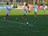 Искусственное покрытие TRIO SPINE 40mm искусственная трава для футбола, мини футбола