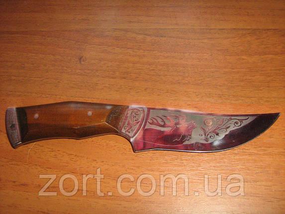 Нож Константиновка Олень М., фото 2