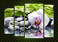 "Модульная картина ""Орхидея, камни, бамбук"""