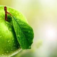 Зеленое Яблоко отдушка, 1 литр