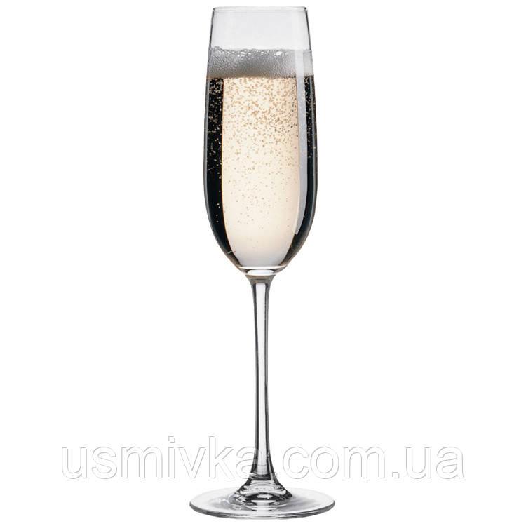 Набор фужеров для шампанского BB77767039 (6шт)