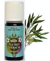 Эфирное масло Чайное Дерево с манукой и канукой, натуральное, Швейцария / Tea Tree manuka kanuka