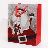 Пакет подарочный упаковочный декоративный