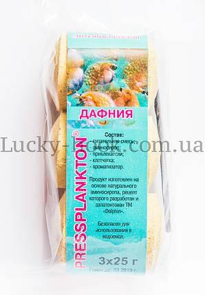 "Technoplankton Dolphin ""Дафния"", фото 2"