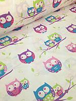 Хлопковая ткань польская совы на фиолетовых веточках