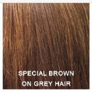 Хна Спец Коричневая 100г Индия. Special Brown Henna.