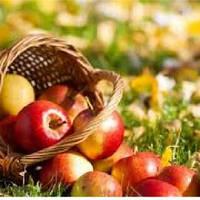 Отдушка Яблочный циклон, 1 литр