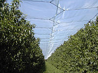 Сетка защита от града DEFENDER зеленая, размер: ячейки 7х8 мм, рулона 4х100 м - Италия