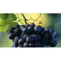 Отдушка Черный Виноград - 1 литр