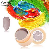 Гель-краска Canni №556 бежево-серая