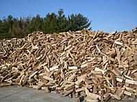 Дубовые колотые сухие дрова Васильков Киевская область