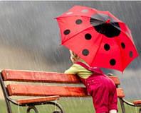 Зонты для взрослых и детей.