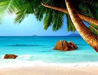 Кафель панно  Пляж с пальмой. Печать на кафеле, плитка 20х30см.