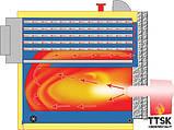 Жаротрубный котел Emtas EGS/3G-1750 треходовой под горелку , фото 3
