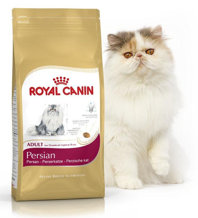 Корм для кошек персидской породы Royal Canin Persian
