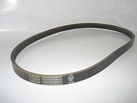 ремень генератора GEELY(CK/MK)5РК960(ориг)