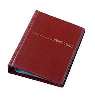 Визитница 120 визиток (Panta Plast, на кольцах, Винил, бордовый, 0304-0007-10)