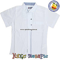Белая рубашка с коротким рукавом для мальчика Размеры: 5-6-8 лет (4490)