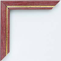Рамка А2 42х60  ширина багета 2,2 см 2219B-215