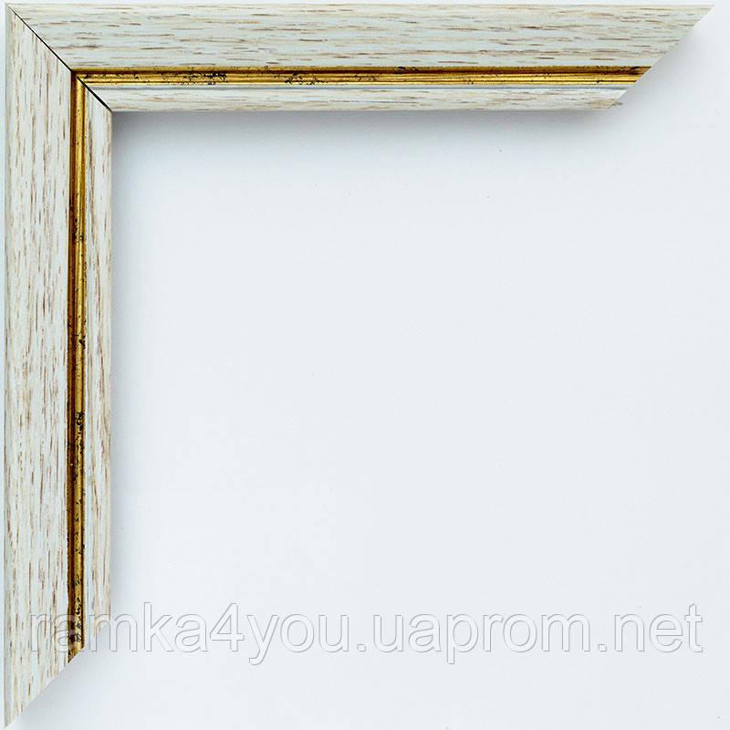 Рамка А2 42х60  ширина багета 2,2 см 2219B-204