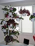 """Підставка для квітів на підвіконня """"Розпірка"""", фото 5"""