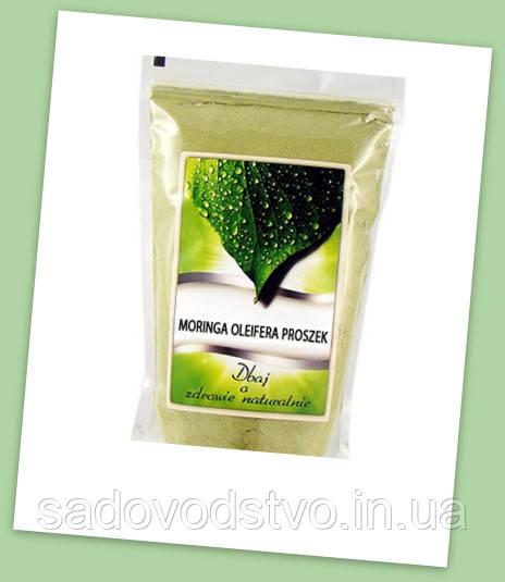 Моринга масличная