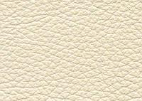 Кожа натуральная мебельная Dolaro Latte 20