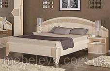 Кровать Аляска ортопед 160 1012х1704х2072мм    Мебель-Сервис, фото 3