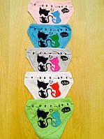 Трусики детские для девочки  Кошка