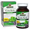 Готу Кола Nature's Answer, 950 мг, 90 натуральных капсул. Сделано в США.