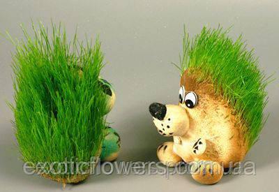 травянчик. эко-игрушка