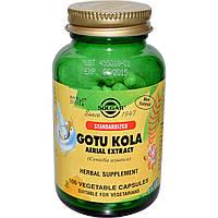 Экстракт Готу кола, Solgar, 100 натуральных капсул. Сделано в США