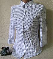 Блузка - рубашка для девушек, р-р 38-46. Школьные кофточки , водолазки, блузки для девочек