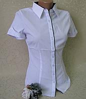 Блузка - рубашка для девушек, р-р 38-46. Школьные кофточки , водолазки, блузки для девочек, фото 1